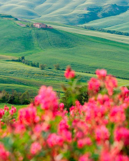 Le morbide colline di S. Quirico d'Orcia in Toscana